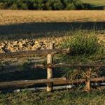 2010_08_29 Toscana Pienza196